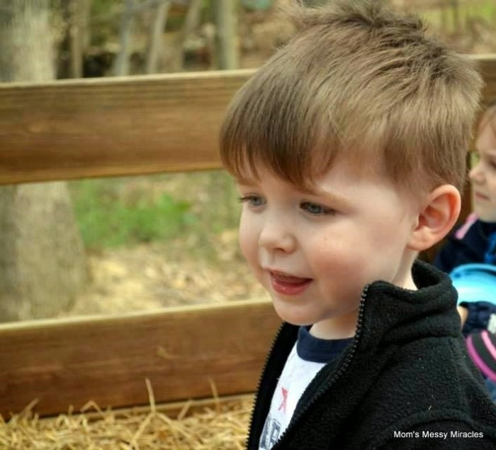 Charlie on hayride Easter