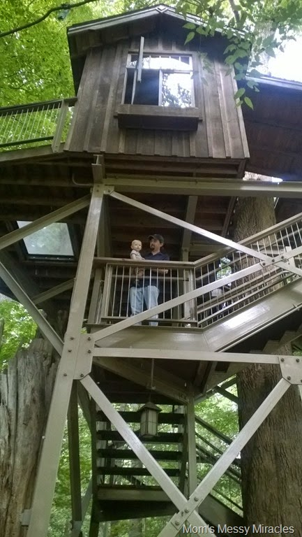 Daddy and Owen climbing treehouse