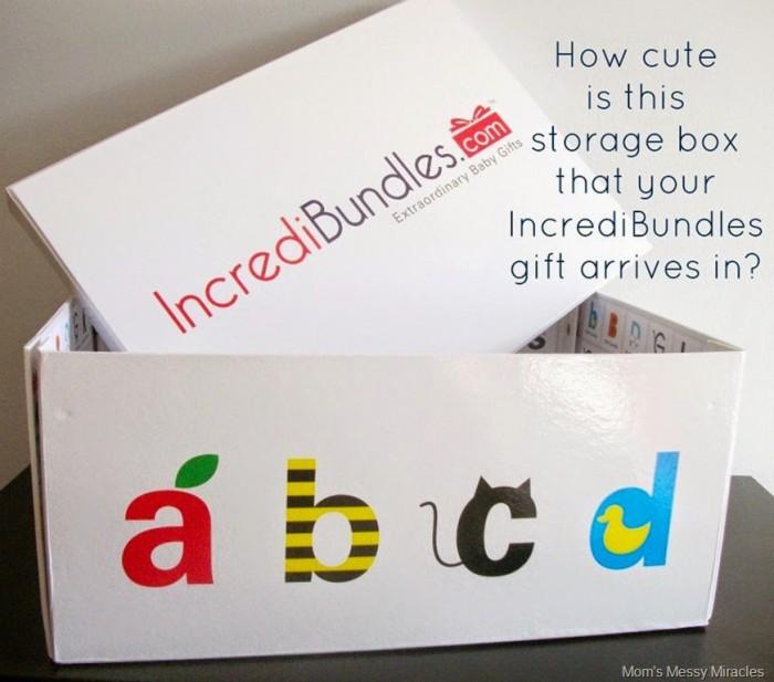 Incredibundles storage box