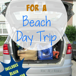 Prepping for a Beach Day Trip