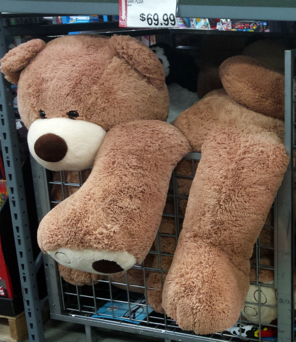 BJ's Giant Plush Bear
