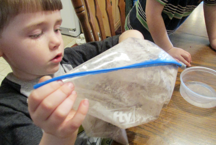 Shaking Puppy Chow in Bag