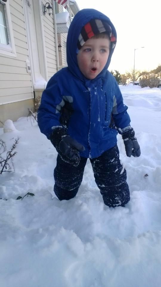 Charlie in snow Jan 2014