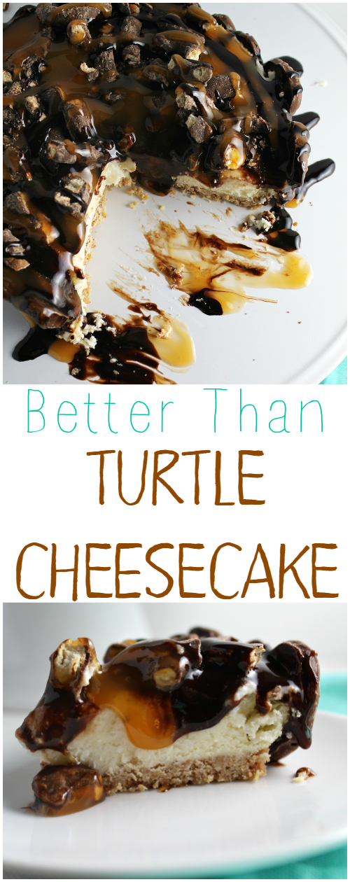 Better Than Turtle Cheesecake is the perfect combination of sweet and salty!