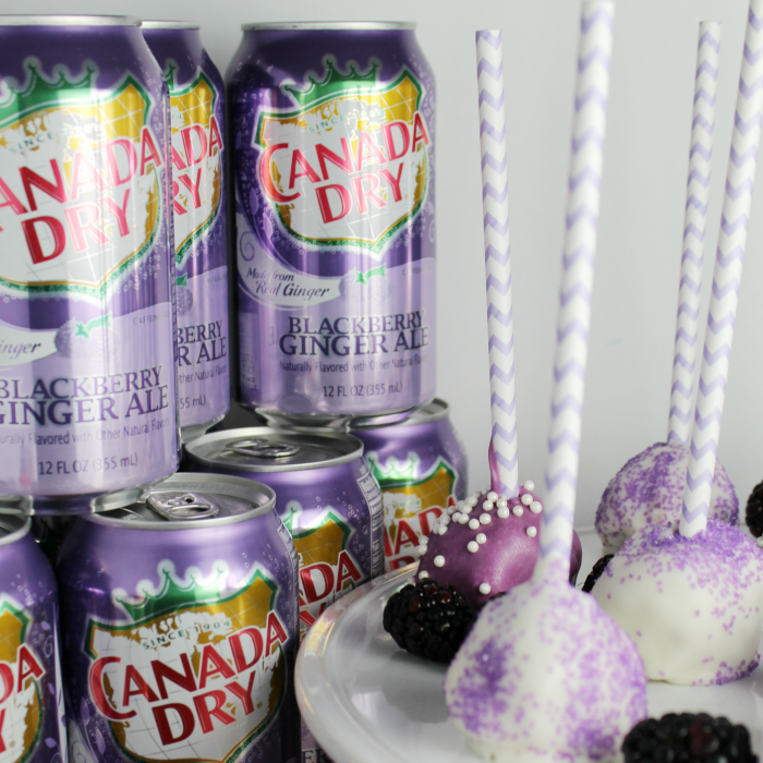 Canada Dry Blackberry Ginger Ale cans