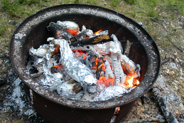 Campfire for family camping