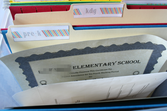 File Folders with Labels School Memory Box