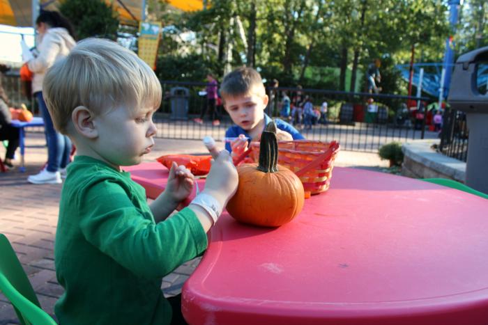 coloring-pumpkins-at-kings-dominion