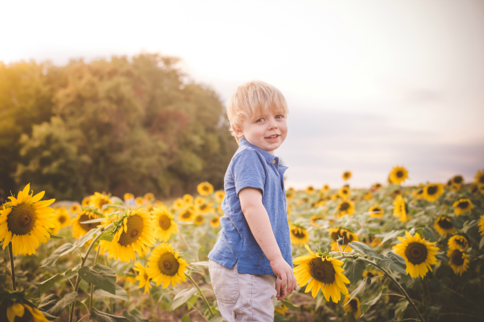 owen-sunflowers-2016